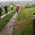 2018_05_16 _Luzernerhinterland_Beat  (130)