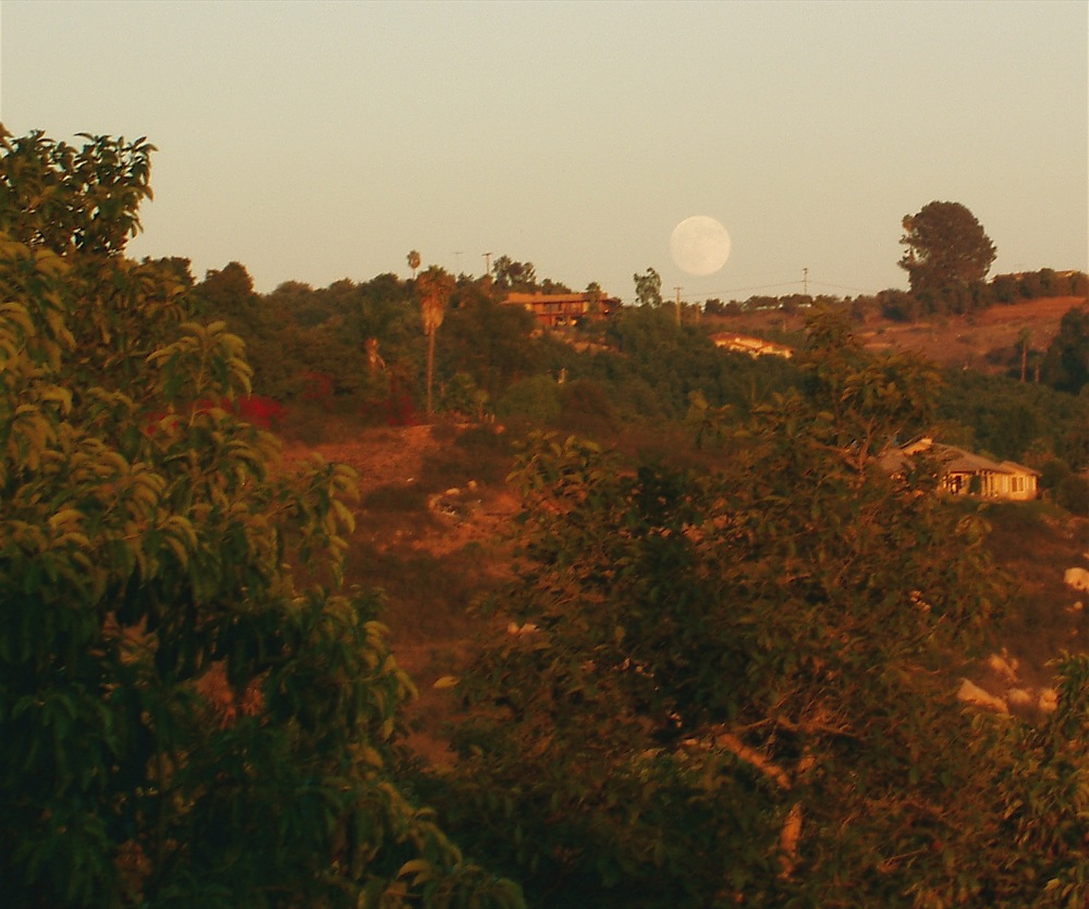 full_moon_rising_14tishri.jpg
