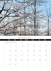 Chiot's Run 2011 Calendar