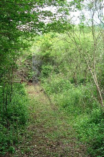 A SWAT Net Lane