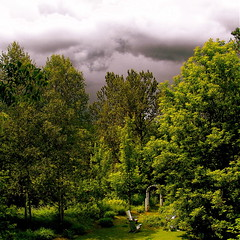 A heavy sky with foreboding on my garden! (Denis Collette...!!!) Tags: trees light sky cloud canada black tree art clouds garden photography photo noir photographie lumire jardin ciel arbres photograph qubec thunderstorm nuage nuages heavy arbre thunder orage tempte photographe tonnerre holidaysvancanzeurlaub goldenphotographer deniscollette blackclouds skyheavy withforeboding askyheavywithforeboding nuagesnoirs cielmenaant