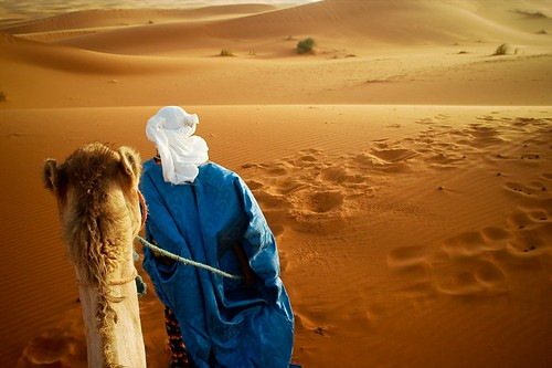 Lead Me Into The Desert