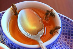 african bees like honey