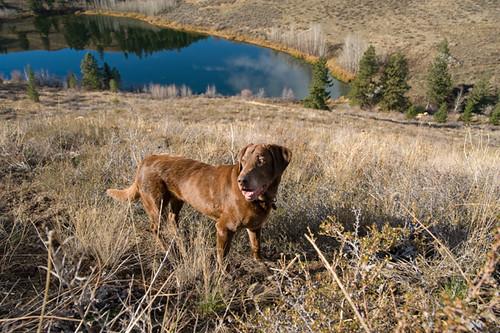 sam and Aspen Lake
