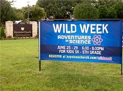 Wild Week 9