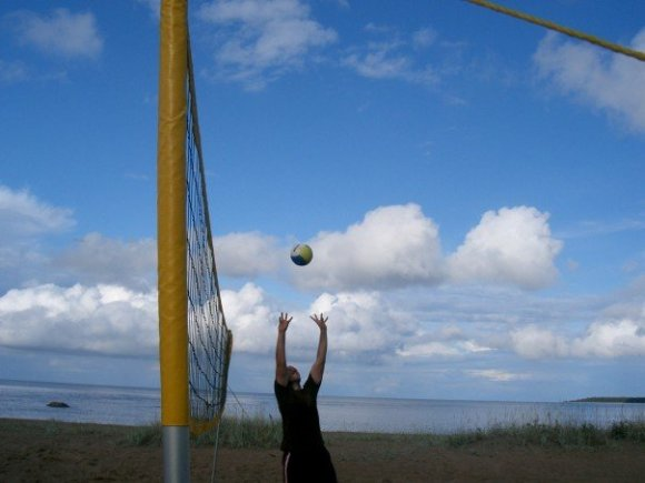 Favorit volley-bild
