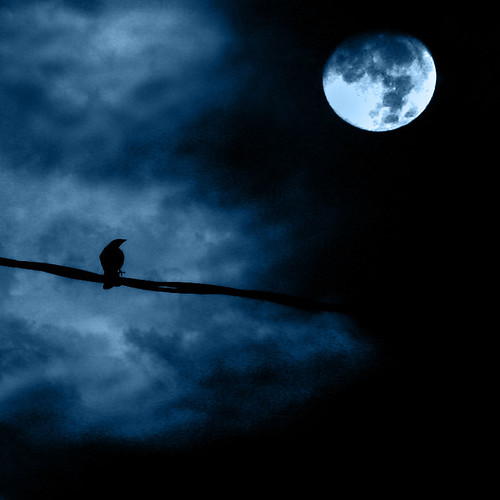 Noche de luna llena - Full moon night by Luz Adriana Villa A., on Flickr