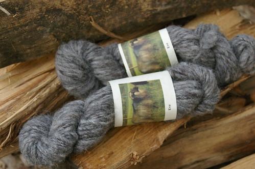 Eve's wool