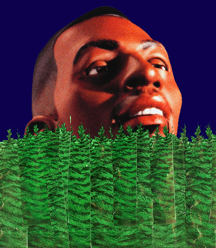 LIL PENNY LOST IN THE FOREST