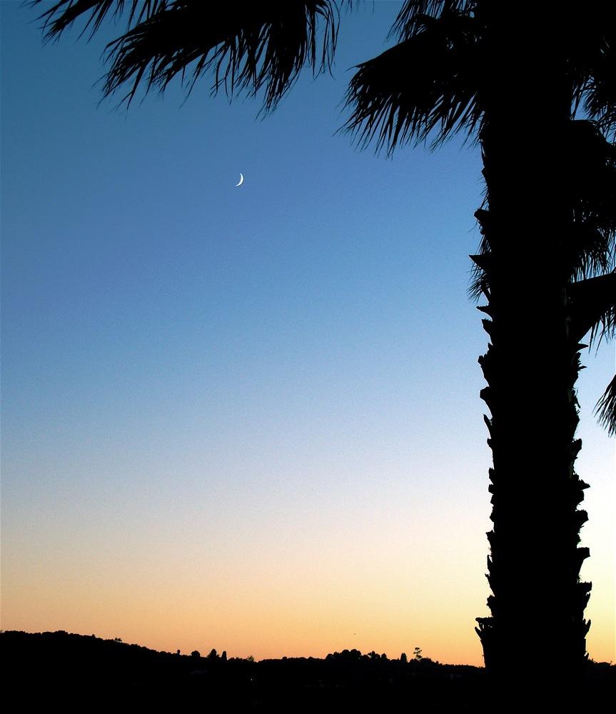 4tishri5768_moon.JPG