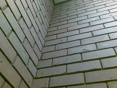 07092007(001) Walls in my sch