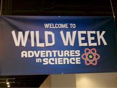 Wild Week 6