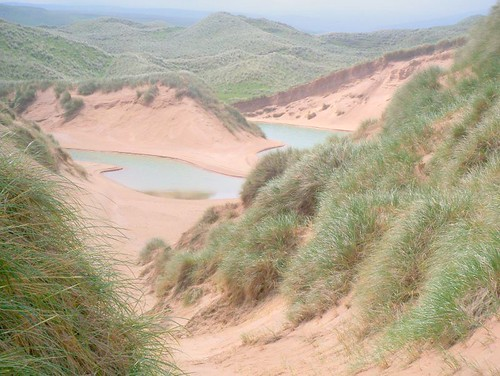 Balnakeil Dunes