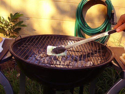 Oiling the grill