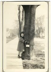 Anne the Tree Hugger