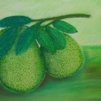 點畫_柚子(Citrus grandis)
