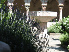Lavender and Fountain: Cuxa Cloister