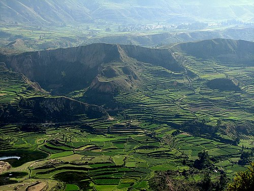 Valle del Colca (by morrissey)