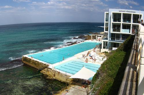 Image of Bondi Icebergs swimming pool