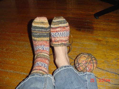 Twisted Toucan Socks