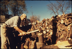 Mr. August Vogel Chops Wood to Feed the Wood B...