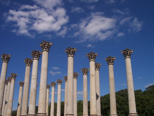 Capitol Columns from the 1800's live here at the National Arboretum