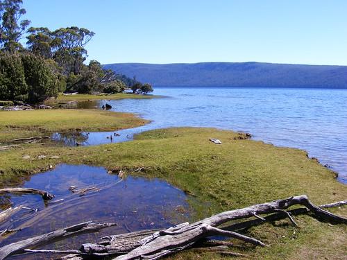 2008_0106australia20336