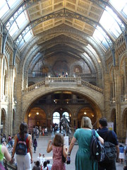 Natural History Museum (14)