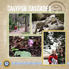 calypso left