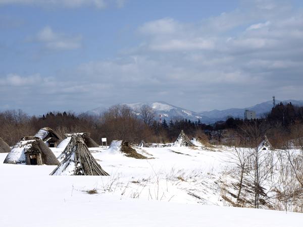三内丸山遺跡 5
