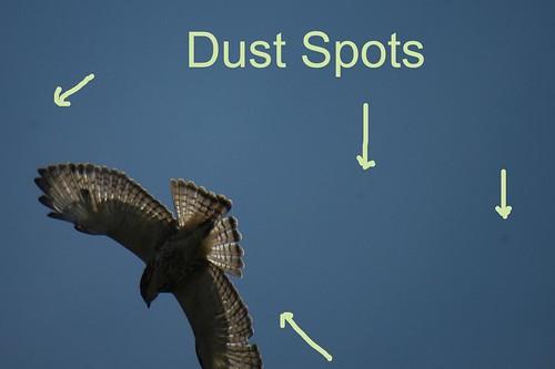 dust spot