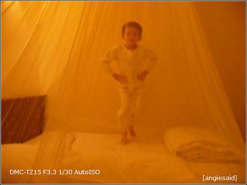 b-20090102_205710.jpg
