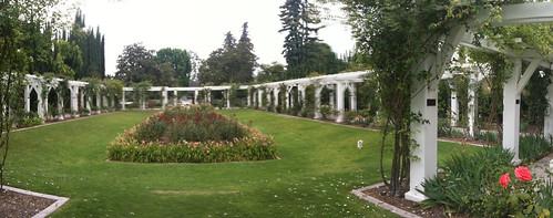 Lacy Park Rose Garden