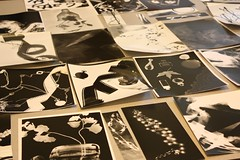 Photograms workshop