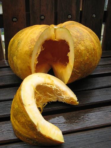 Hulless pumpkin