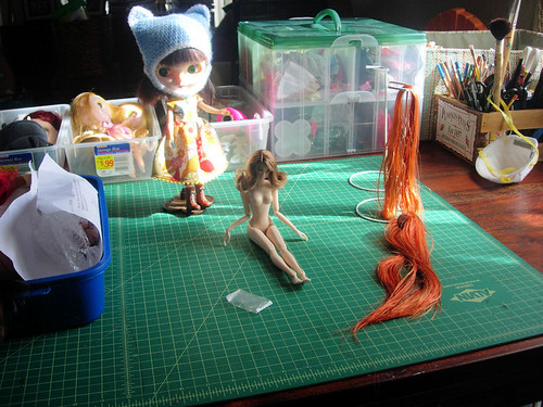 Dolly workshop