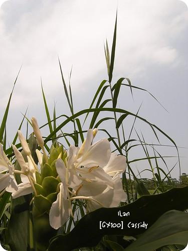 20070916-069