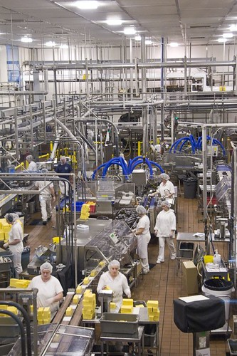 Tillamook Cheese factory floor