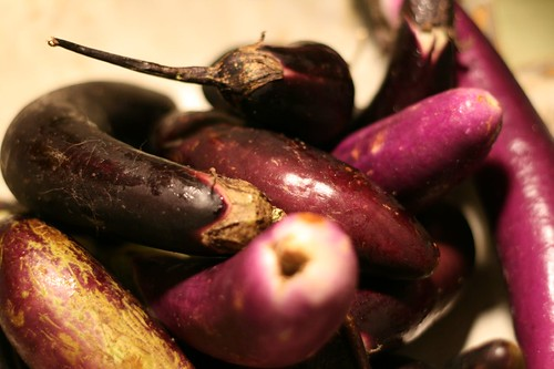 Two Pounds of Eggplants