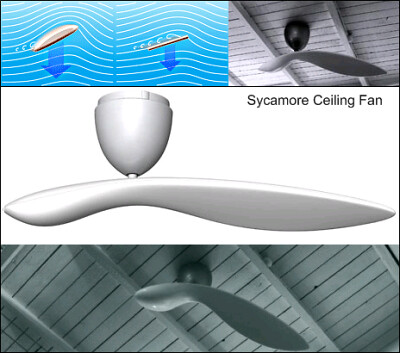 sycamore seed-like fan