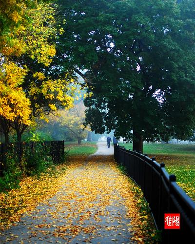 D80-CHI_AutumnStroll02-2010_10-11B