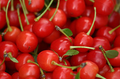 cherries from the garden tree