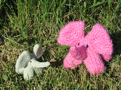knit elephant duo