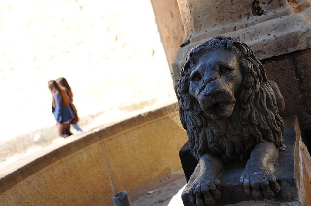 León segoviano