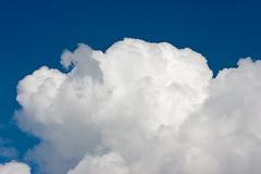 Cloud : Cumulus Mediocris