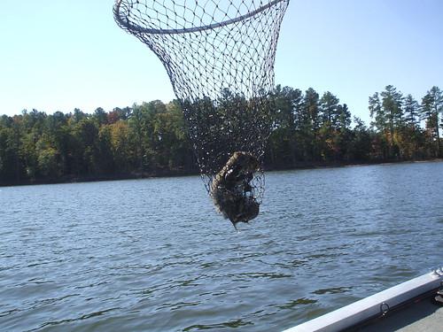 2010_1029fishing0002