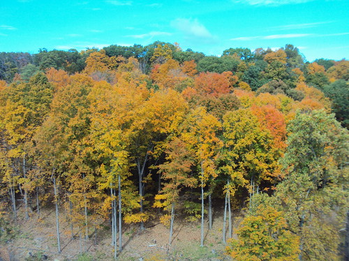 Hudson Fall