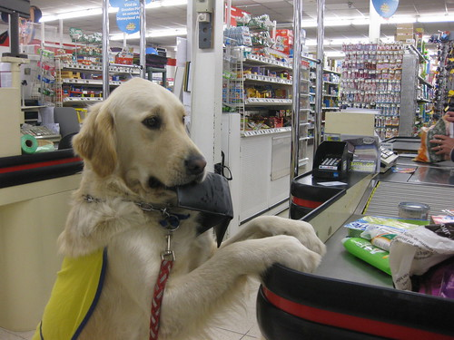 Alix shopping
