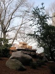 Zen Garden Meditations