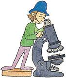 Microscópio alternativo
